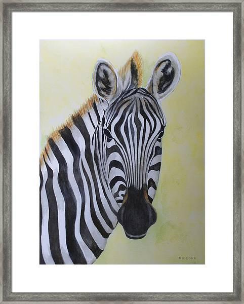 Yipes Stripes Framed Print
