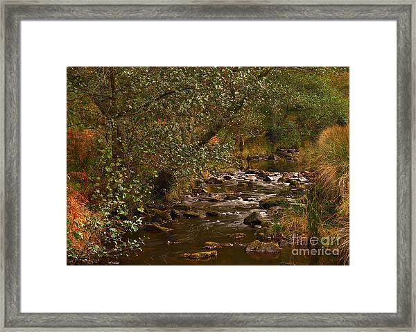 Yorkshire Moors Stream In Autumn Framed Print