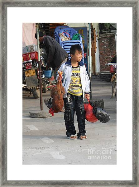 Young Boy Carrying A Dead Chicken To School Framed Print