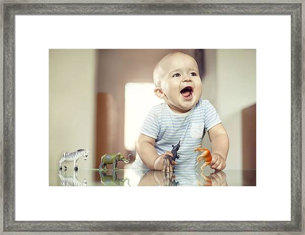 Young Boy Playing With Toy Animals Framed Print by Orbon Alija