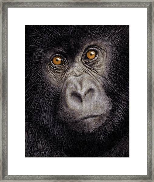 Young Gorilla Painting Framed Print