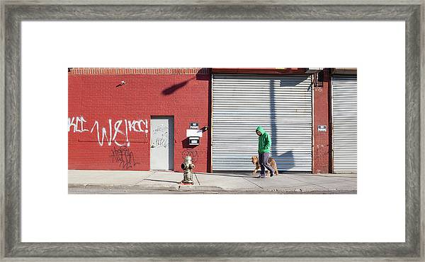 Young Man Walks Dog Framed Print