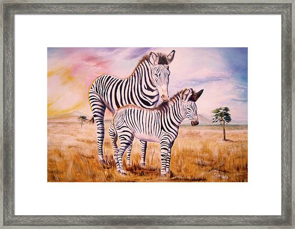 Zebra And Foal Framed Print