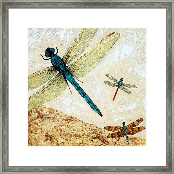 Zen Flight - Dragonfly Art By Sharon Cummings Framed Print