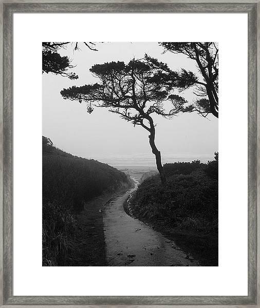Zen Path Framed Print