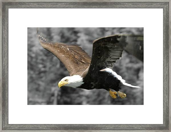 Zeroed In Framed Print