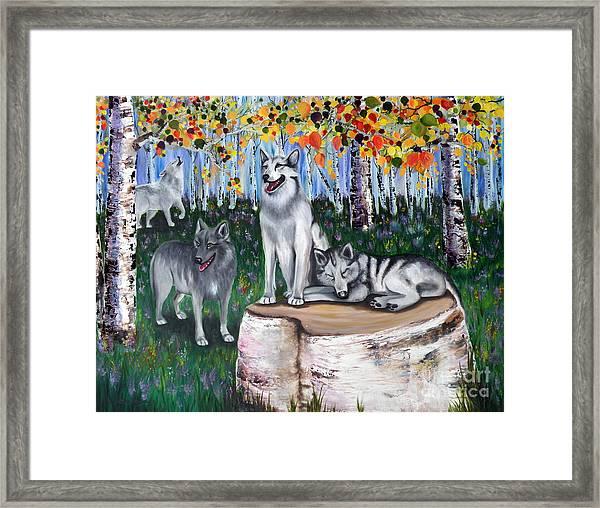 Zorros Wolves Amid The Aspens Framed Print