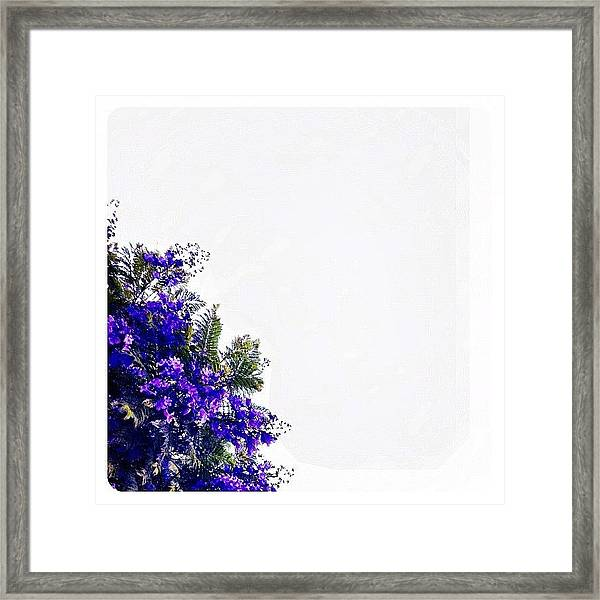 Corner Bouquet Framed Print