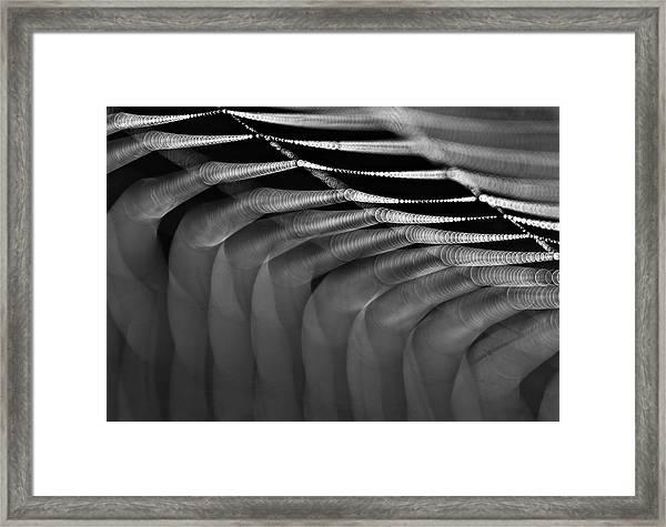 Light Web Framed Print