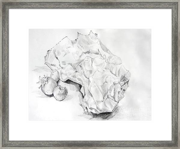Out Of The Bag Framed Print by Jan Bennicoff