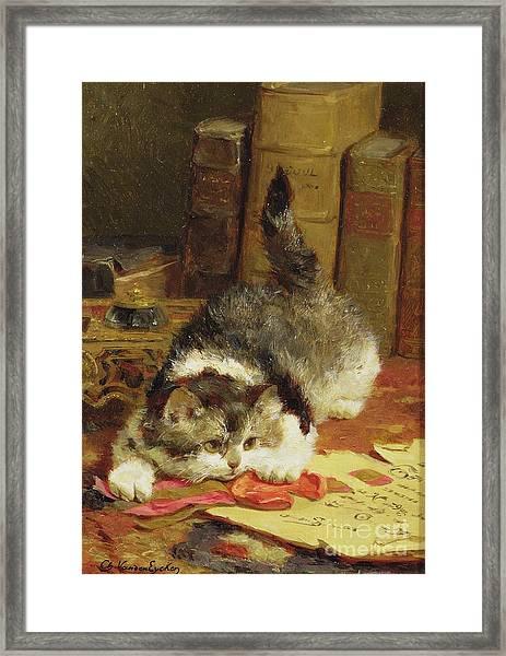 Stalking Cat Framed Print