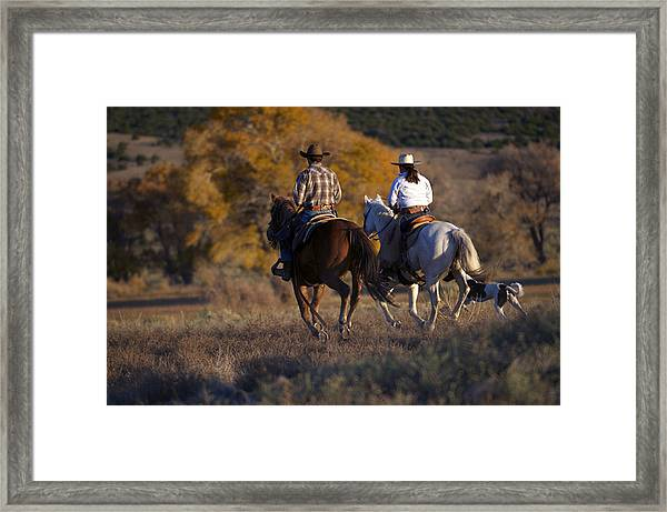 A Ride In The Park Framed Print