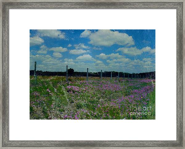 Archer Flax Framed Print