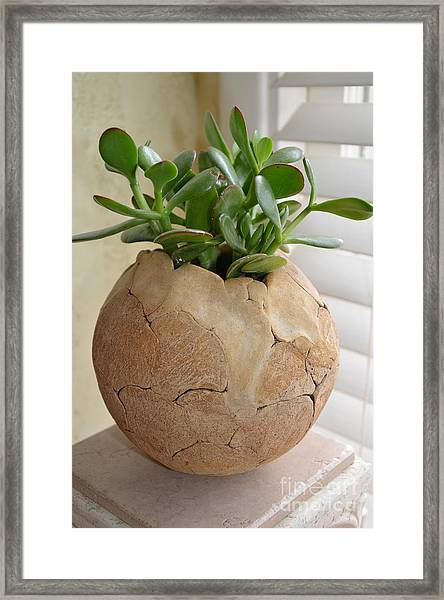 Ceramic Vessel Framed Print by Christine Belt