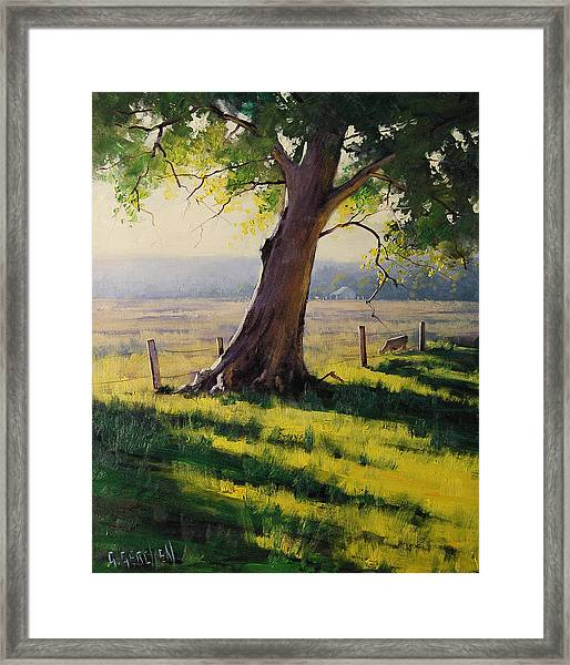 Distant Farm Framed Print