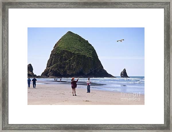 Flying A Bird Kite Near Haystack Rock Canon Beach Oregon Usa Framed Print