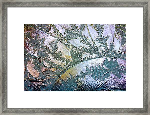 Glass Designs Framed Print