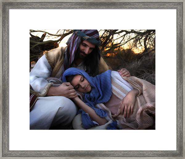 I Will Provide And Protect Framed Print