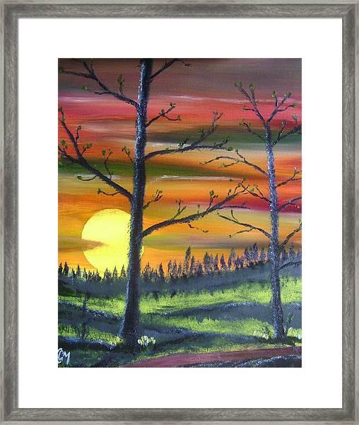 Spring Sunrise Framed Print