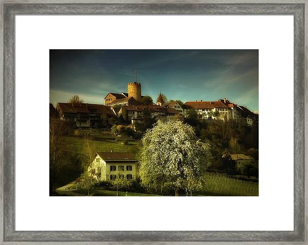 Spring Framed Print by Svetlana Peric