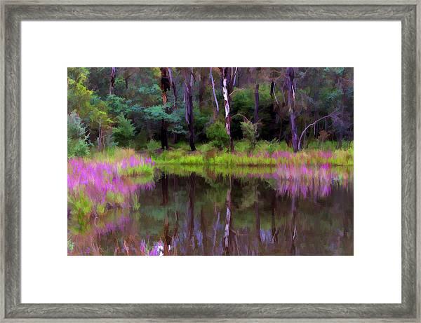 Tidbinbilla Reflections Framed Print