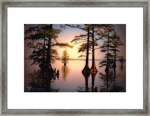 Reelfoot Lake Framed Print