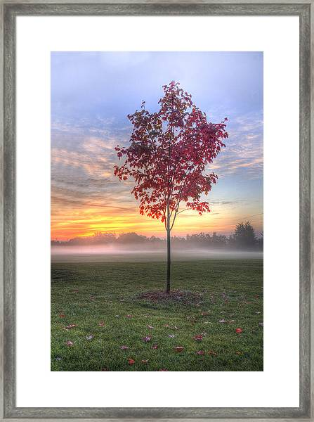 Morning Landscape Framed Print