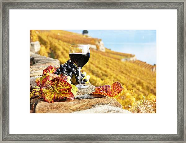 Red Wine And Grapes Photograph By Alexander Chaikin
