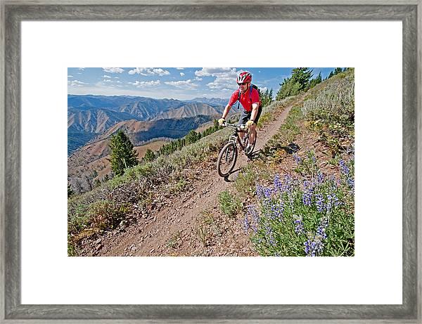 Mountain Bike Framed Print by Elijah Weber