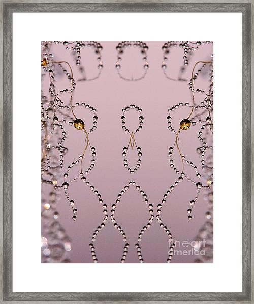 Spider Web Reflection Framed Print