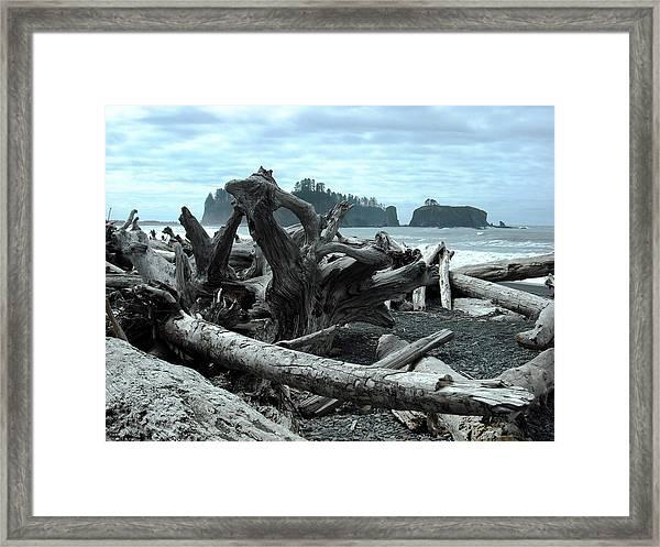 Rialto Beach La Push Framed Print
