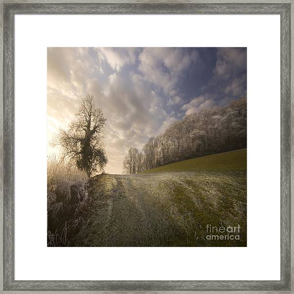 Frosty Landscape Framed Print by Angel Ciesniarska