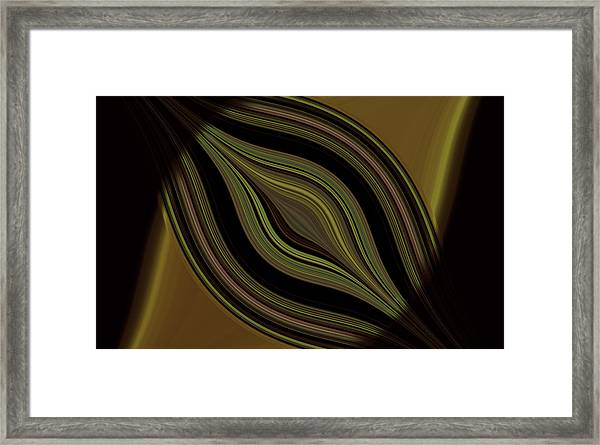 Framed Print featuring the digital art Decoration by Mihaela Stancu
