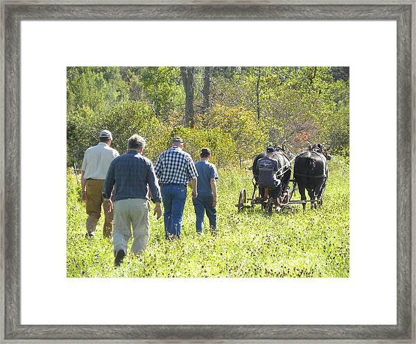 A Family Affair Framed Print