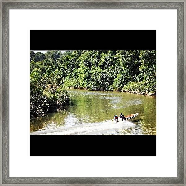 A Ride Amongst The Mangroves, Taken Framed Print
