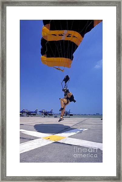A Skydiver From The U.s. Army Golden Framed Print