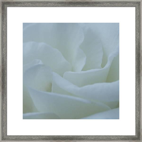 A Soft Embrace Framed Print