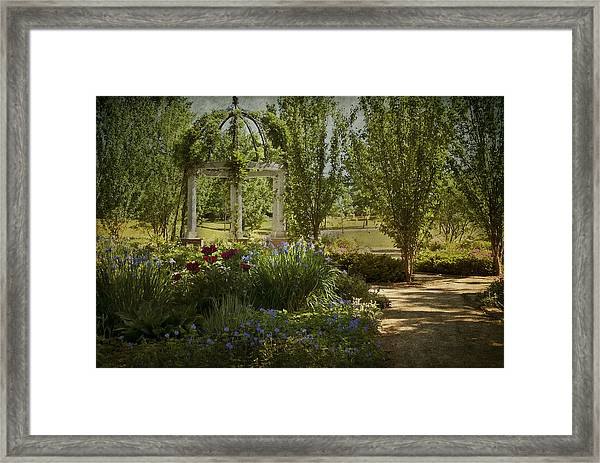 A Stroll In The Park Framed Print