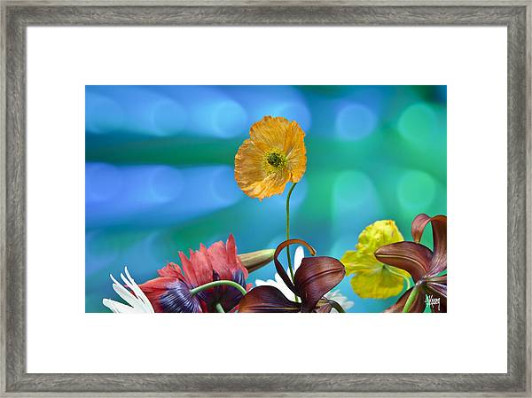 Above The Crowd Framed Print