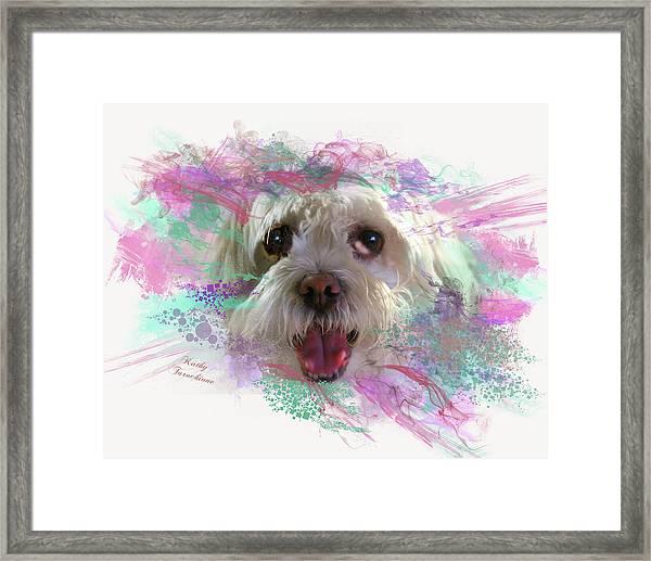 Adopt Me Framed Print