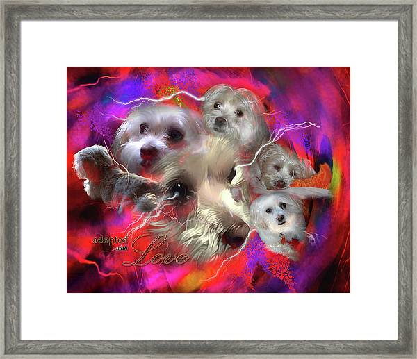 Adopted With Love Framed Print