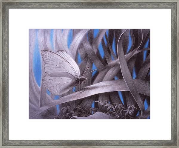 Allambie To Remain Awhile Framed Print