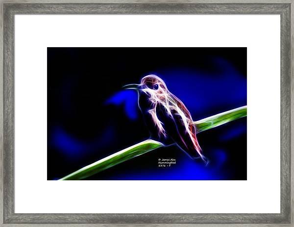 Allens Hummingbird - Fractal Framed Print