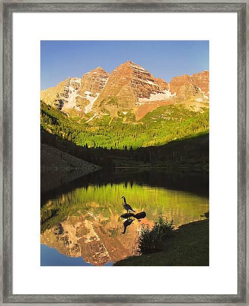 Alone On A Rock Framed Print
