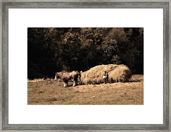 Amish Hay Wagon Framed Print