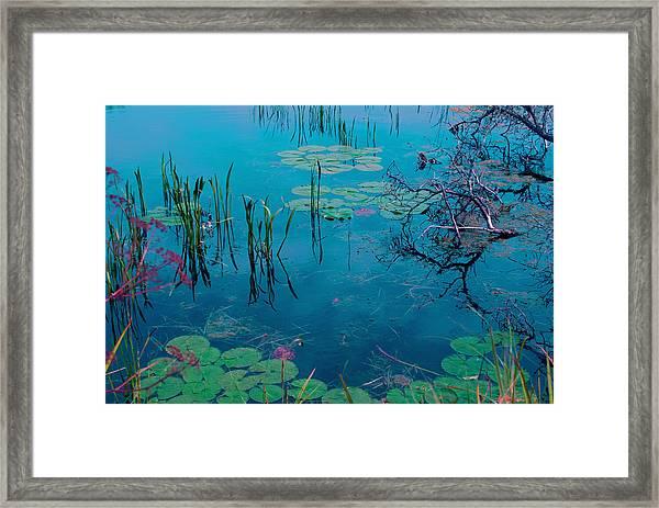 Another World Vii Framed Print