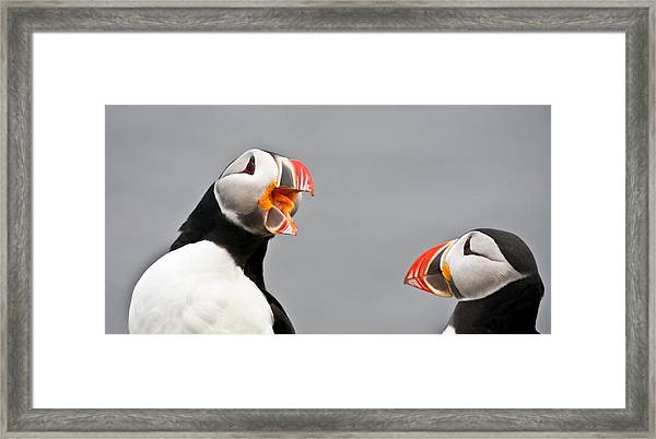 Are You Listening To Me Framed Print