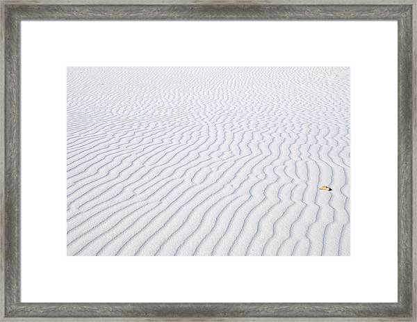 Artwork By Wind Framed Print