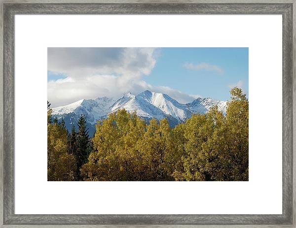 Aspen Fall Colours  Framed Print
