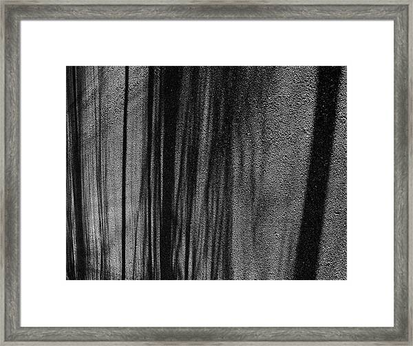 Aspen Shadows Framed Print